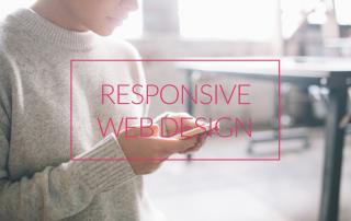google responsive website test