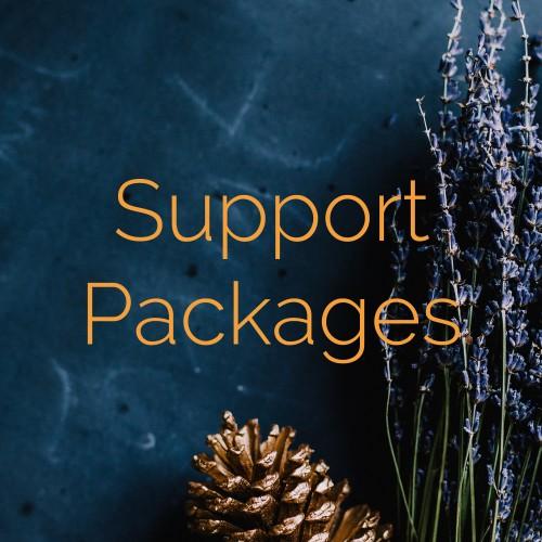 website design support package